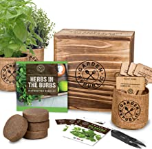 Indoor Herb Garden Starter Kit - Heirloom, Non-GMO Herb Seeds - Basil Thyme Parsley Cilantro Seed, Potting Soil, Pots, Sci...