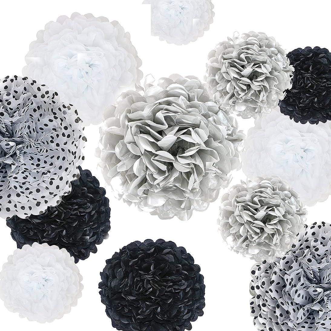 VIDAL CRAFTS 20 Pcs Tissue Paper Pom Poms Kit (14