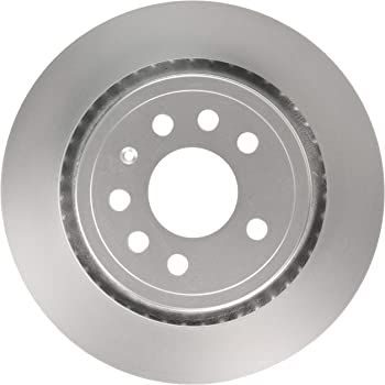 Raybestos 980330FZN Rust Prevention Technology Coated Rotor Brake