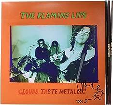 Best flaming lips heady nuggs clouds taste metallic Reviews