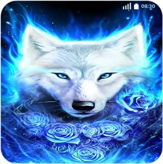 Husky Fire Wolf Wallpaper 4k - New Images Locker Phone