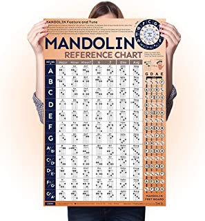 Mandolin Chord Chart Laminated Popular Chords, Mandolin Fretboard Notes and Circle of Fifths, Useful for Mandolin Beginner...