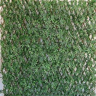 Tenax - Seto Artificial con Hojas Extensibles de Sauce, Divy 3D X-Tens Acer Palmatum, 1 x 2 m, Verde