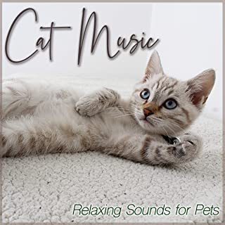 Cat Music : Relaxing Sounds for Pets