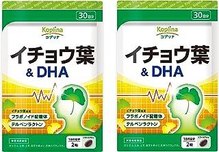 イチョウ葉&DHA 2個セット 60日分 60粒×2