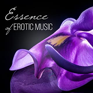 Essence of Erotic Music: Intimate Moments, Hot Foreplay, Love Making Music, Romantic Night, Tantric Sex Chillout, Sensual Massage, Red Passion Lounge