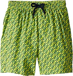 St-Barth Superflex Swim Trunks (Toddler/Little Kids/Big Kids)