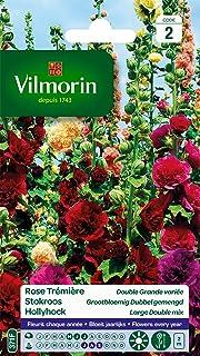 Vilmorin 5751742 Pack de Graines Rose Trémière Double Grande Variée