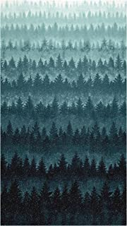 teal ombre fabric