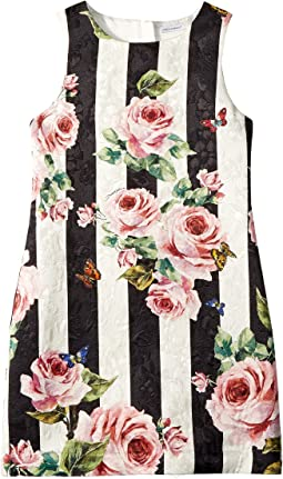 Dolce & Gabbana Kids Sleeveless Dress (Big Kids)