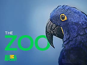 The Zoo Season 2