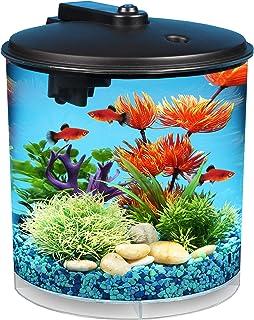 Aquariums In Bangalore