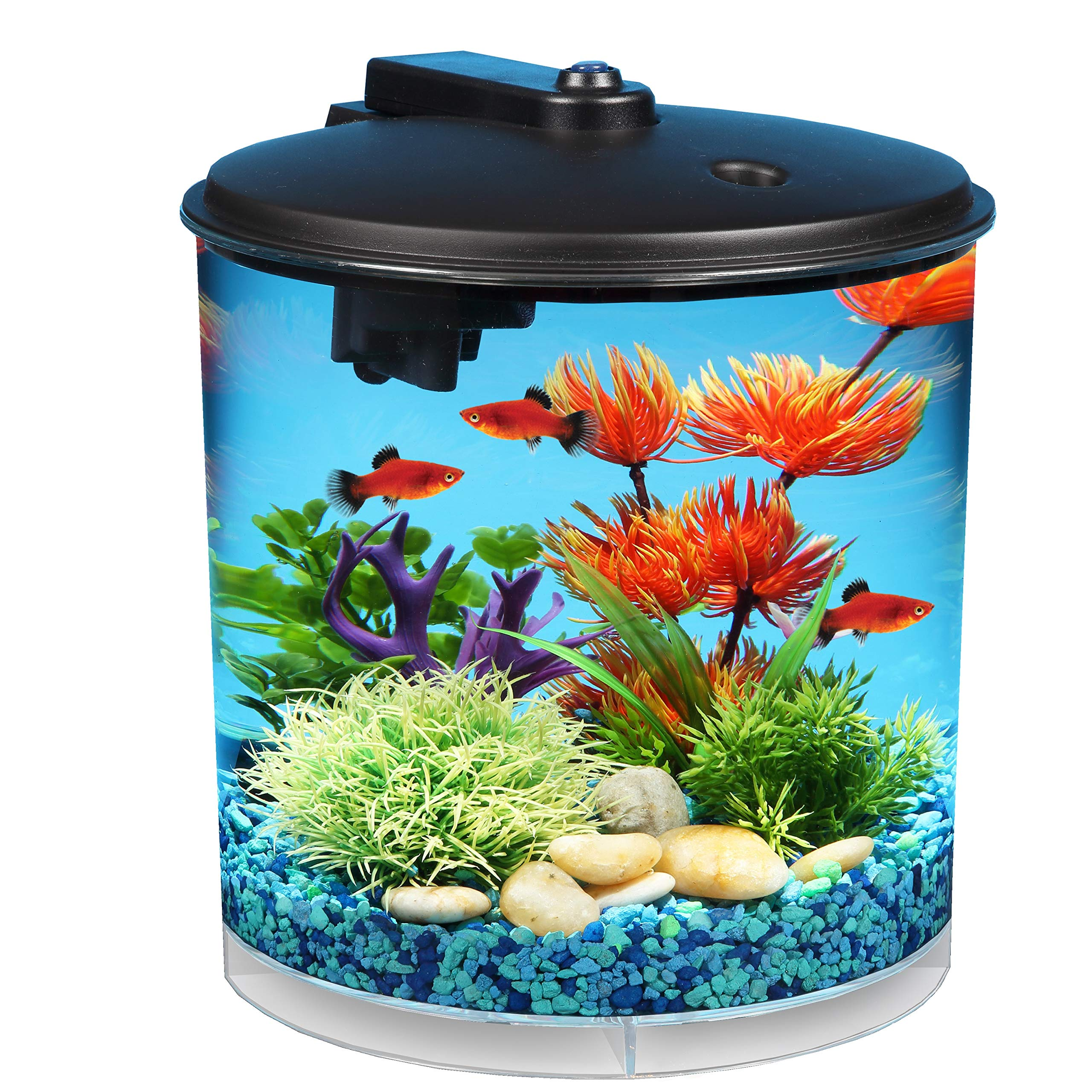 Koller Products AquaView 2 Gallon Lighting
