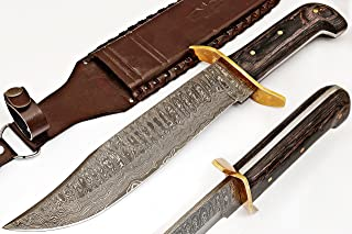 AishaTech Tiger Tom Hunters Bowie Knife Damascus steel Blade Diamond wood Handle