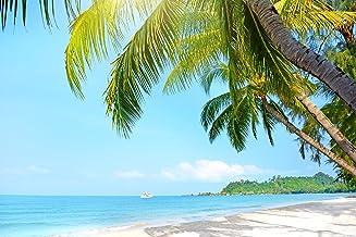 Mi Alma Pegatinas de vinilo 3D extraíbles para pared – Gran variedad de playas tropicales – Fácil de aplicar, simplemente ...