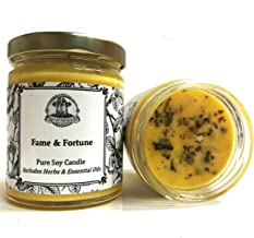 Fame & Fortune 8 oz Soy Spell Candle for for Beauty, Notoriety, Wealth, Success & Adoration (Hoodoo Voodoo Wiccan Pagan Magick)