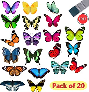 large butterfly window stickers