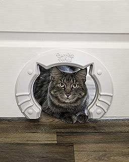 Best hollow door interior Reviews