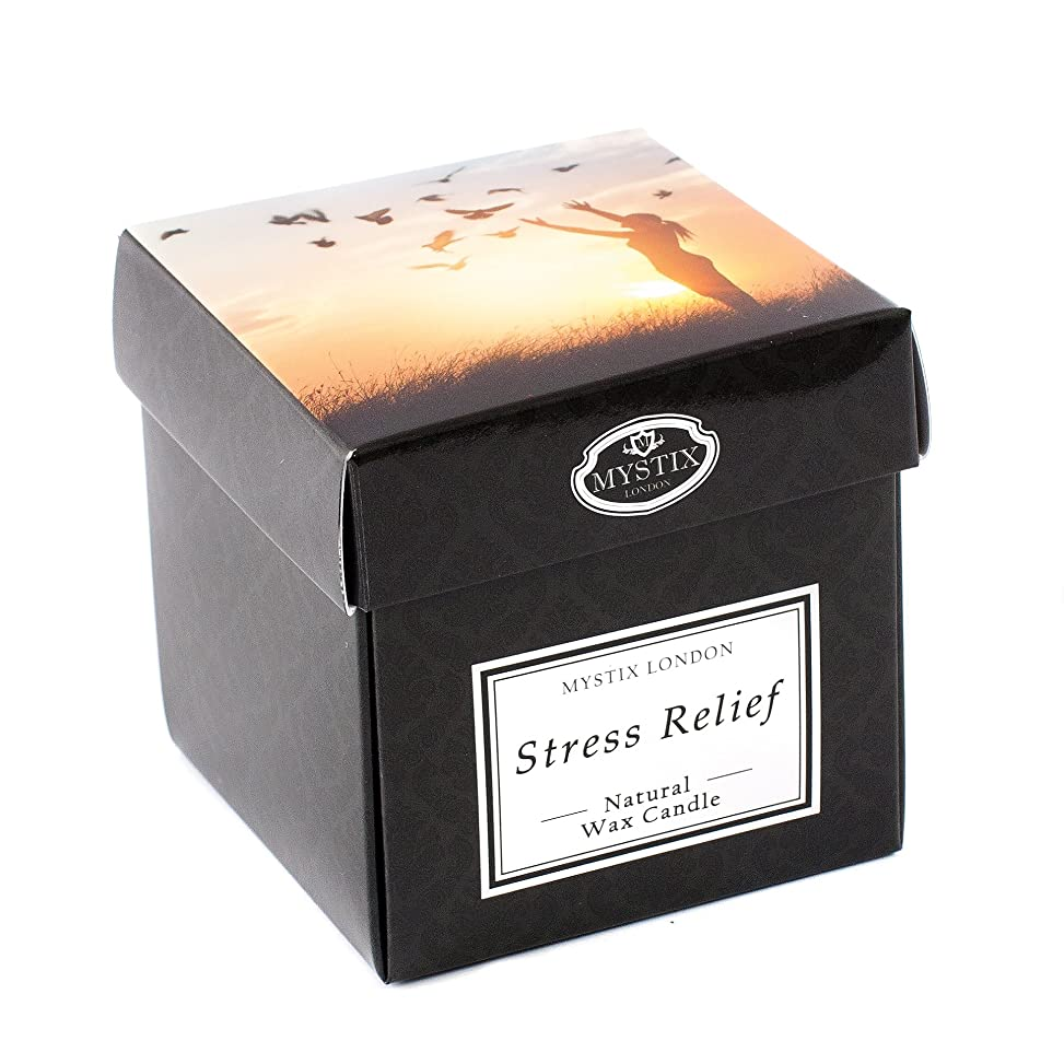 不良品遺跡改善するMystix London | Stress Relief Scented Candle - Large