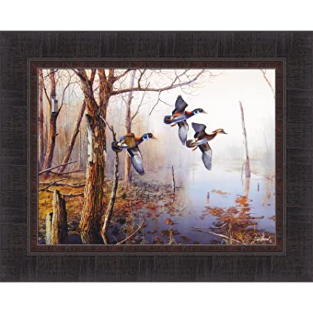 Amazon Com Backwater By Jim Hansel 17x21 Wood Ducks Framed Art Print Wall Décor Picture Duck Pictures For Walls Posters Prints