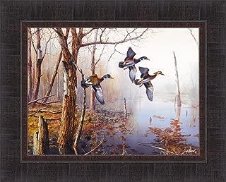 Backwater by Jim Hansel 17x21 Wood Ducks Framed Art Print Wall Décor Picture