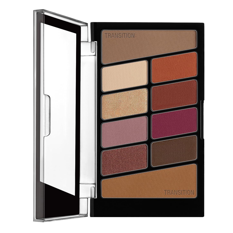 フィクション明確な傾くWET N WILD Color Icon Eyeshadow 10 Pan Palette - Rosé In The Air (並行輸入品)