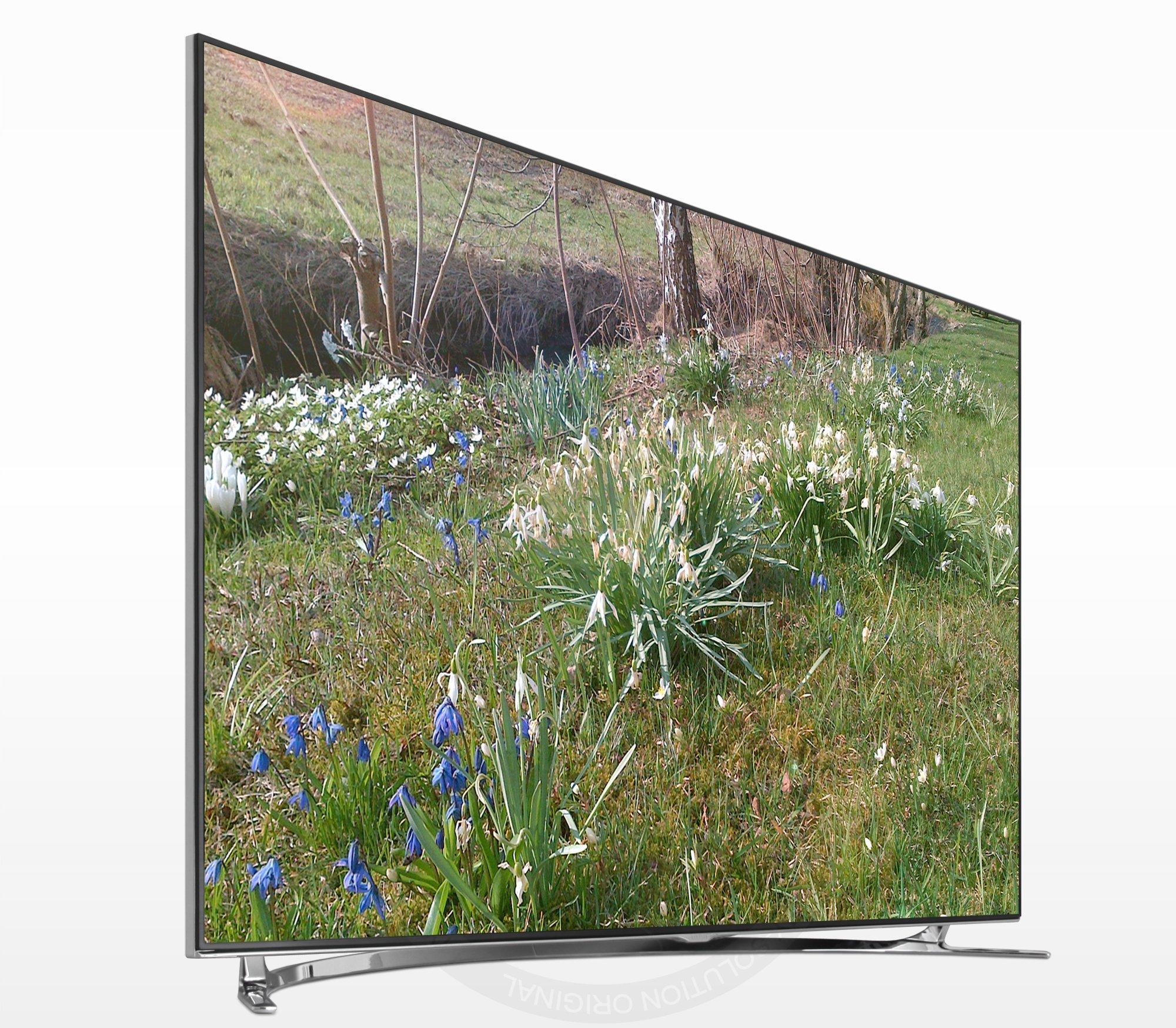 Samsung UE75F8000 - Televisor LED de 75