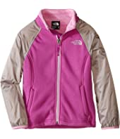 The North Face Kids - Silver Skye Track Jacket (Little Kids/Big Kids)