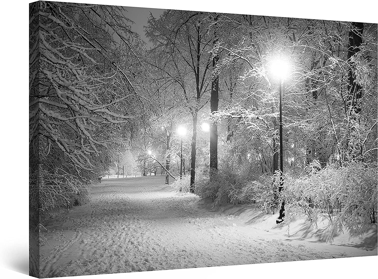 Startonight Canvas Wall Detroit Mall Choice Art Black Winter Abstract and White Park
