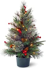 National Tree 2' Feel Real(R) Colonial Small Wrapped Tree with Red Berries, Cones & 35 Warm White Battery Operated LED Lig...
