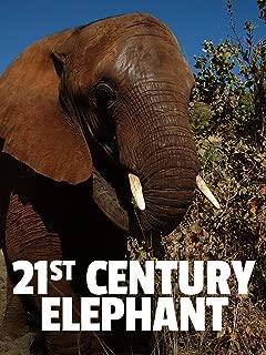 21st Century Elephant