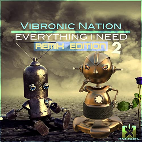 Vibronic Nation feat. Debbiah - Everything I Need (Remix Edition 2)