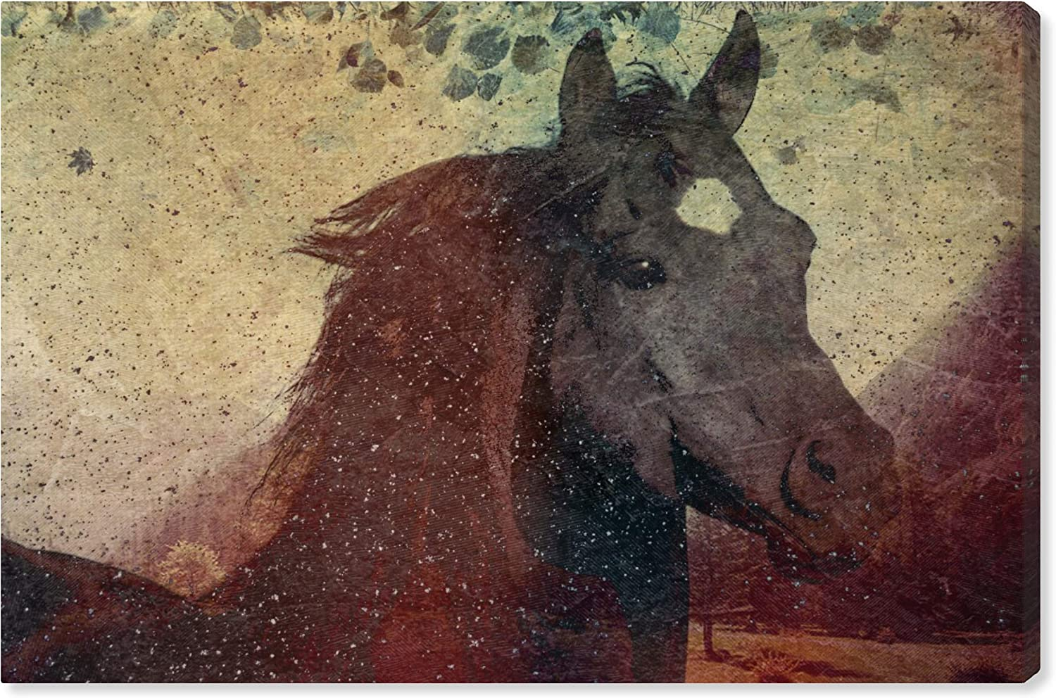 The Oliver Gal Artist Co. Animals Daily bargain sale Canvas El Paso Mall Prints Wall 'Glare' Art