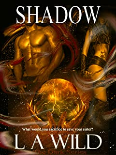 Shadow the Darkness (The Dark Series Book 4)
