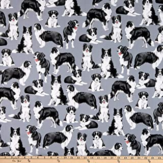 Timeless Treasures Dog Show Border Collies Blue Fabric