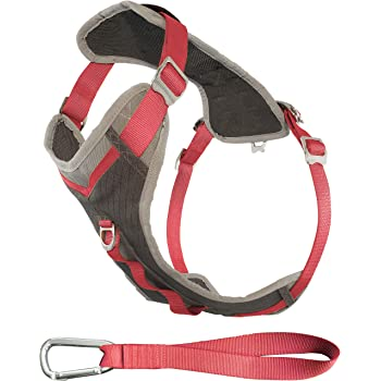 Kurgo Dog Harness for Large, Medium & Small Dogs | Reflective Harness for Running, Walking & Hiking | Everyday Adventure Pet Journey Harness | Grey/Coral, Large