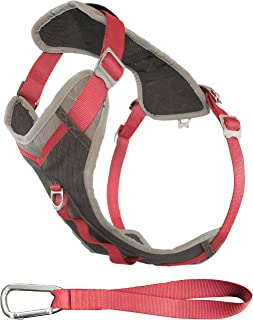 Kurgo Dog Harness for Large, Medium & Small Dogs | Reflective Harness for Running, Walking & Hiking | Everyday Adventure P...