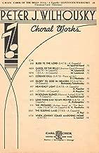 Carol of the Bells (Ukranian Christmas Carol) SSA A Capella (Leontovich-Wilhousky) Set of 26 Copies