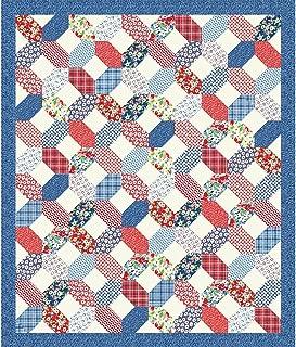 Kim's Cause Collection Hi-De-Ho Picnic Quilt Quilt Kit Maywood Studio