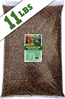 NaturesPeck Mealworm Time Dried Mealworms
