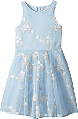 Nanette Lepore Kids Embroidered Metallic Dress (Little Kids/Big Kids)