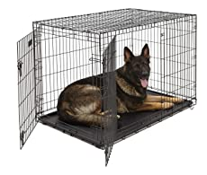XL Dog Crate   MidWest ICrate Double Door Folding Metal Dog Crate w/ Divider Panel XL Dog Breed, Black