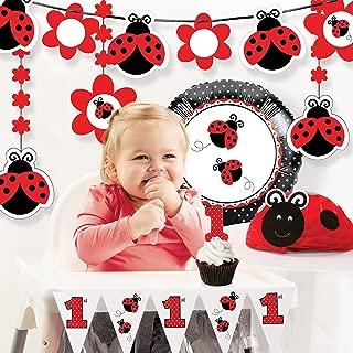 ladybug party supplies 1st birthday
