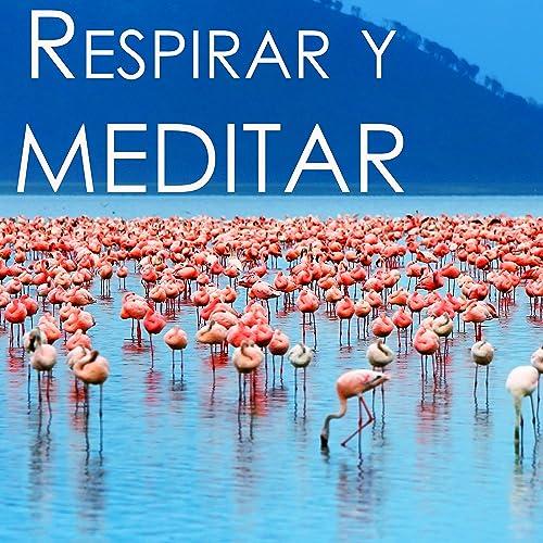 Respirar y Meditar - El Arte de Yoga, Meditacion Zen y ...