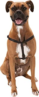 Majestic Pet Best Step in Dog Harness Sized Dogs Small Medium & Large Heavy Duty Material- Adjustable for Training & Walking-100 Customer Satisfaction Guarantee!