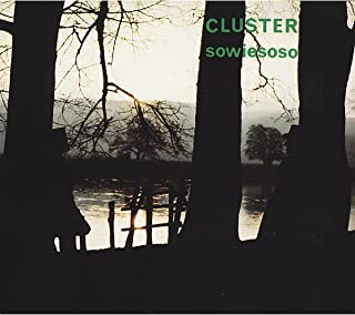 cluster • sowiesoso