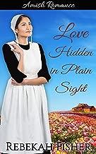 Love Hidden in Plain Sight (Amish Romance)