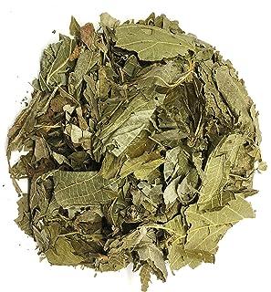 Matico Herbal Tea Value Pack (90g) Piper aduncum