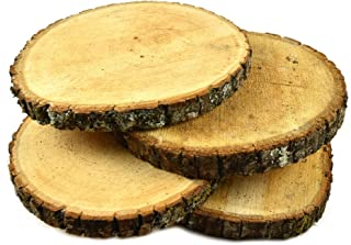 Woodlandia Basswood Disk 10x1 inches (Pack of 4)