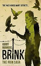 Brink (The Ruin Saga Book 2)
